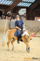 Working Equitation 2010