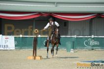 Working Equitation 2012