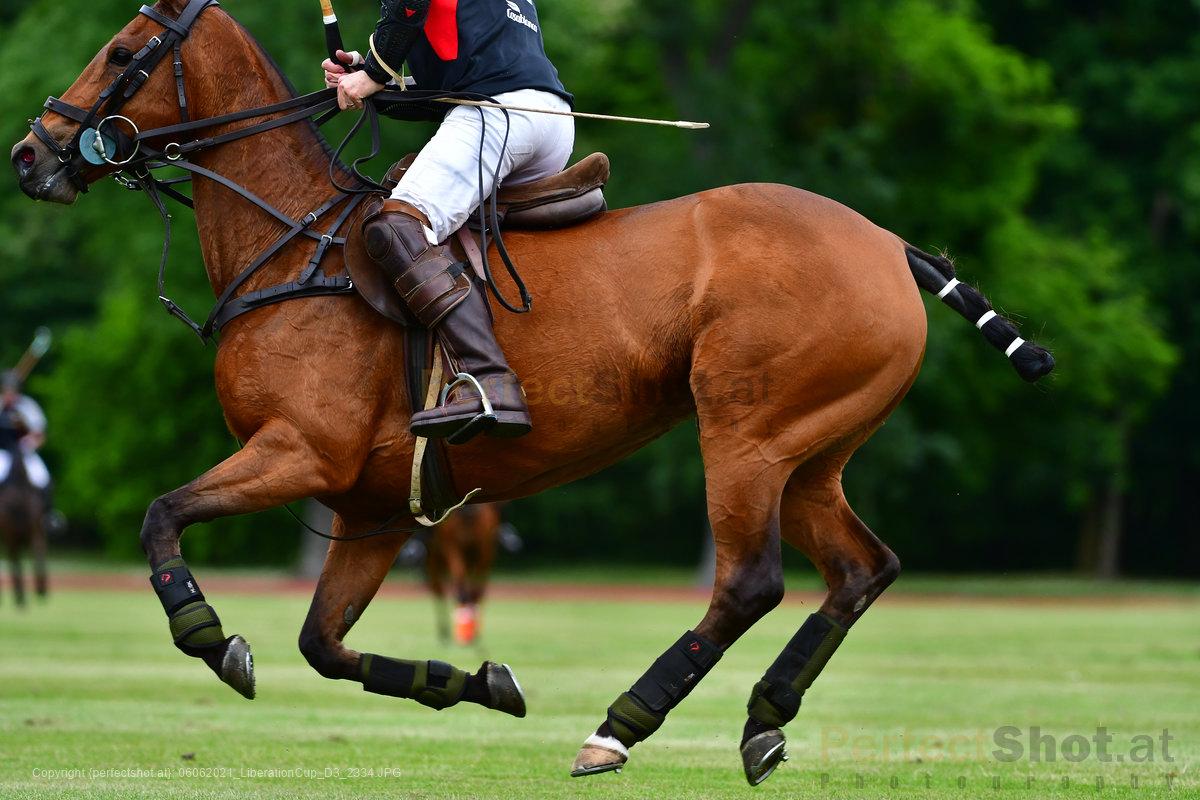 06.06.2021;perfectshot.at;Austria;Polo;2021;Poloclub Schloss Ebreichsdorf;Day 3;Liberation Cup;