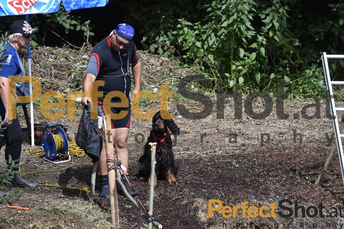 OEHWR; Hundeasserrettung; Hund; Wasserlager ;2019; perfectshot.at;